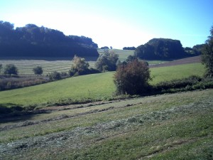 Landschaft unterwegs 2