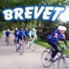 bikekomnet_brevet